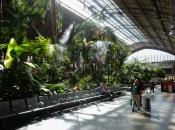 Tropische tuin in Madrid Puerta de Atocha
