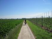 Onderweg in België