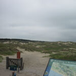 Duinen nabij Wassenaar, bijna thuis.